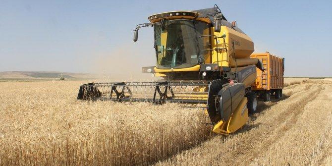 2020 kabusu bitmiyor: Tarımda tehlike çanları