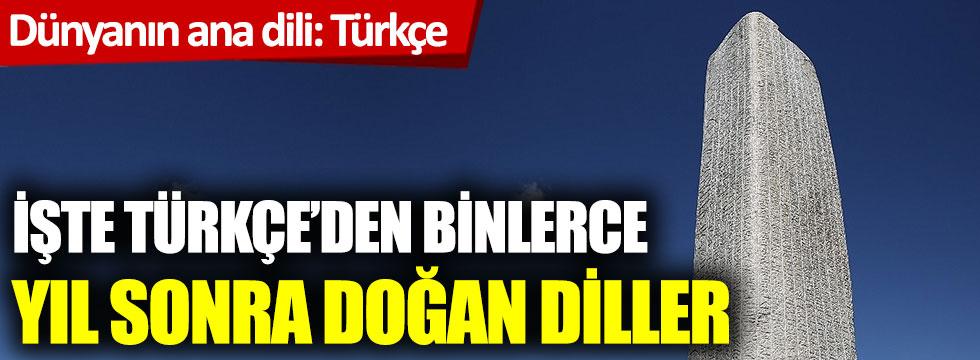 Dünyanın ana dili Türkçe: İşte Türkçe'den sonra doğan diller!