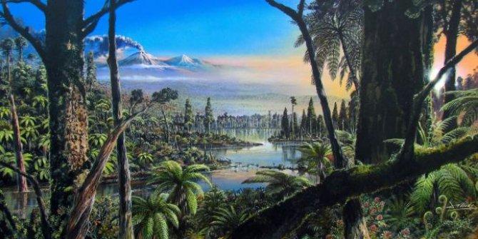 Antartika'da 90 milyon yıllık yağmur ormanları keşfedildi