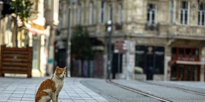 8 Mayıs Cuma günü sokağa çıkma yasağı uygulanacak mı? Hangi günler sokağa çıkma yasağı var?