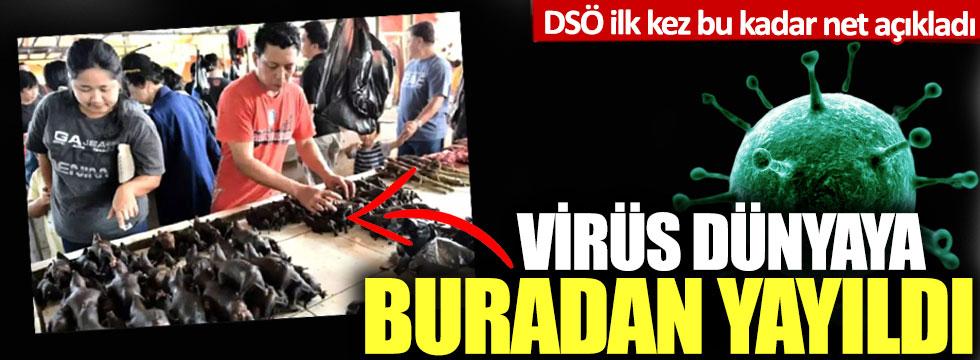 DSÖ ilk kez bu kadar net açıkladı: Virüs dünyaya buradan yayıldı!