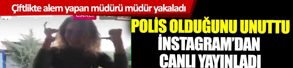 Çiftlikte alem yapan müdürü müdür yakaladı, polis olduğunu unuttu İnstagram'dan canlı yayınladı