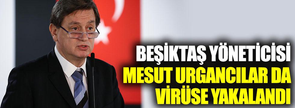 Beşiktaş yöneticisi Mesut Urgancılar da korona virüse yakalandı