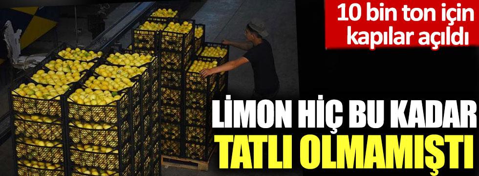 10 bin ton için kapılar açıldı: Limon hiç bu kadar tatlı olmamıştı!