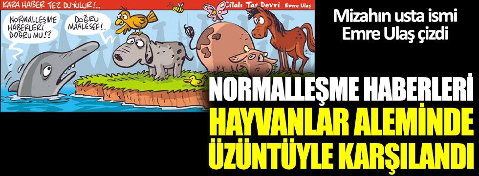 Mizahın usta ismi çizdi: Normalleşme haberleri hayvanlar aleminde üzüntüyle karşılandı