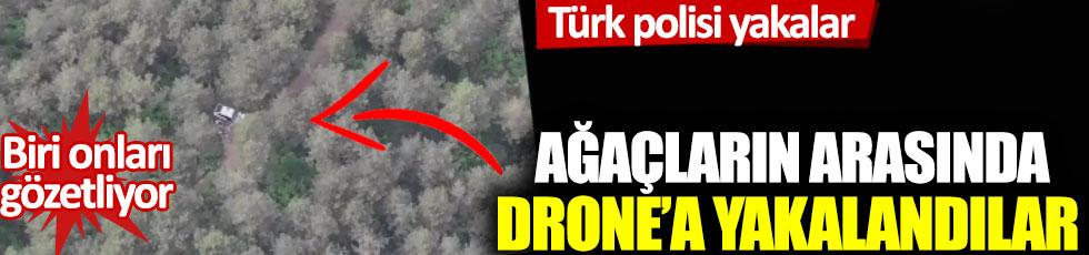 Türk polisi yakalar: Ağaçların arasında drone'a böyle yakalandılar!