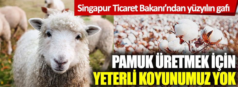 Singapur Ticaret Bakanı'ndan yüzyılın gafı: Pamuk üretmek için yeterli koyunumuz yok