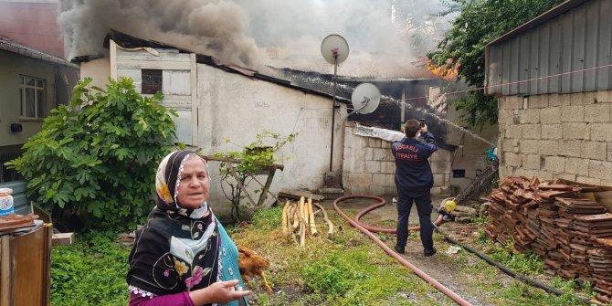 Evinin yanışını tavuğuyla izledi