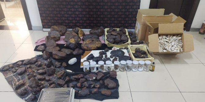 Bir bu eksikti; Balina kusmuğu yakalandı: Değeri 11 Milyon TL