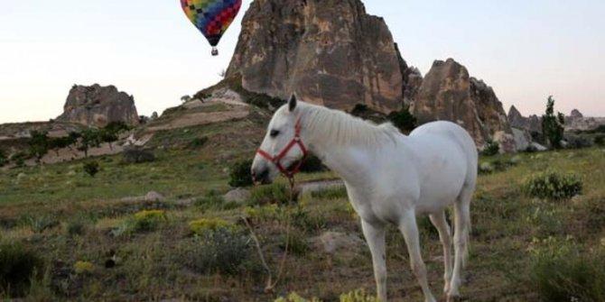 Kapadokya'da görsel şölen