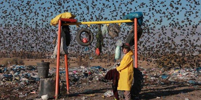 """Dünya Çevre Günü'nde acı gerçekler: """"13 Milyon tür yok olma tehlikesi yaşıyor"""""""