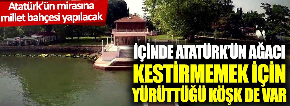 Atatürk'ün mirasına millet bahçesi yapılacak: İçinde Atatürk'ün ağacı kestirmemek için yürüttüğü köşk de var