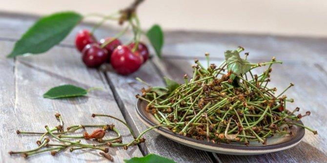 O besinlerin sapını sakın çöpe atmayın: Kanser riskini önlüyor