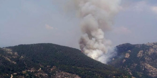 Ormanlarımız cayır cayır yanıyor