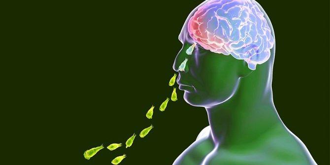 Burundan giriyor insanın beynini yiyor: Yeni salgınımız hayırlı olsun