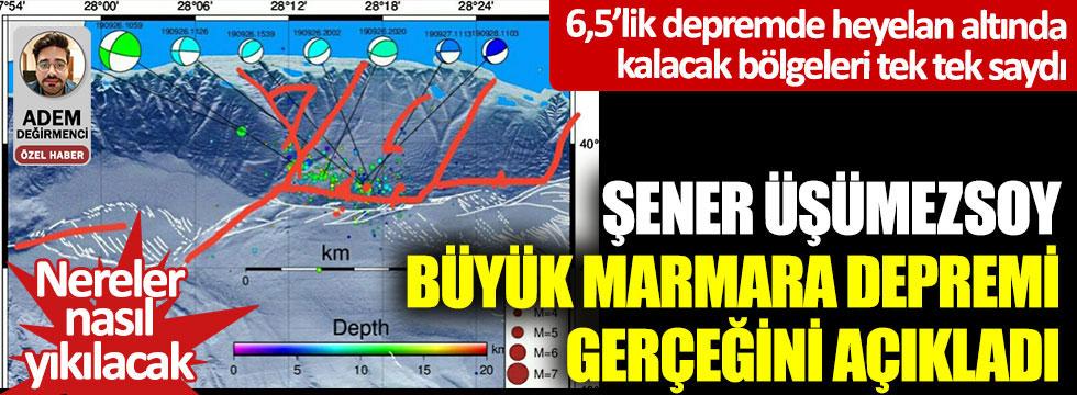 Şener Üşümezsoy, büyük Marmara depremi gerçeğini açıkladı… 6,5'lik depremde heyelan altında kalacak bölgeleri tek tek saydı… Nereler nasıl yıkılacak?