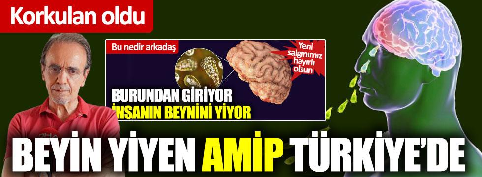Korkulan oldu: Beyin yiyen amip Türkiye'de