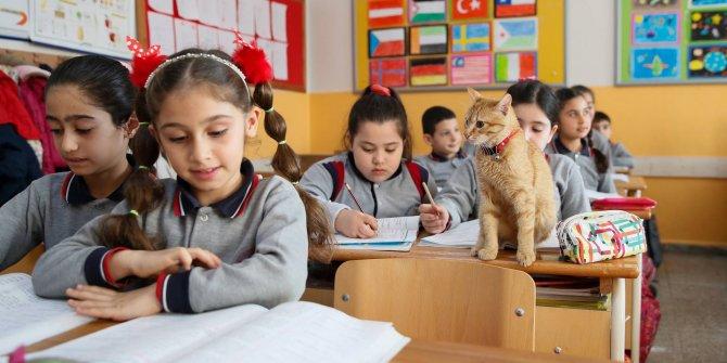 Milli Eğitim Bakanlığı'nın masasındaydı: Bilim Kurulu üyesi açıkladı, korona virüs eğitim sistemini değiştiriyor