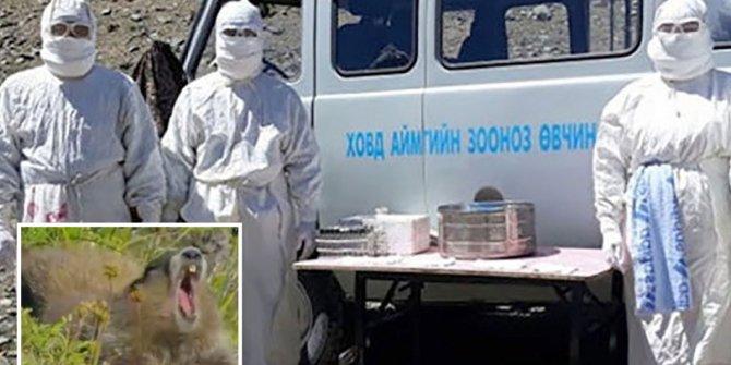Moğolistan'da hıyarcıklı veba hastasının öldüğü doğrulandı