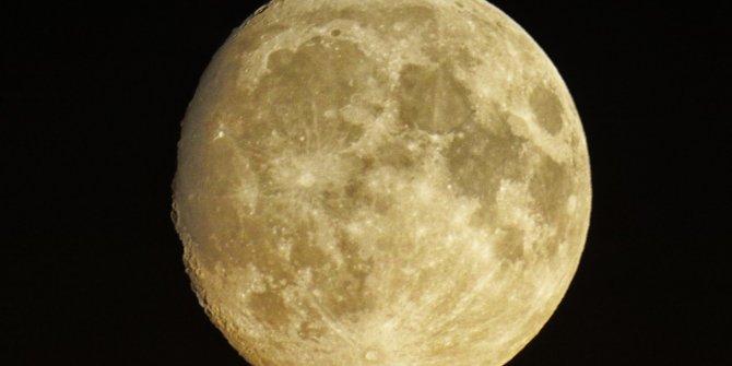 Dedikleri bir bir çıkan ünlülerin astroloğu Kassandra yorumladı:Uçak düşecek deprem olacak