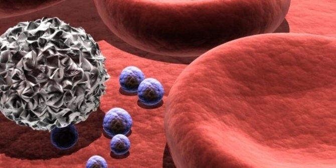 T hücresi nedir?, T hücresinin korona virüse karşı etkisi ne?