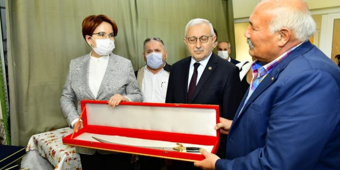 Meral Akşener'e Zülfikar hediye edildi
