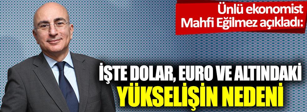 İşte dolar, altın ve euronun yükselişinin nedeni: Ünlü ekonomist Mahfi Eğilmez açıkladı