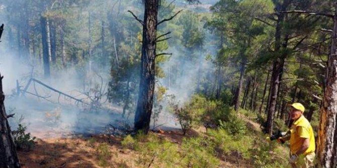 İki günde 6 orman yangını çıkmıştı! Nedeni belli oldu