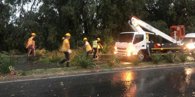 İzmir ve Aydın'da kuvvetli yağış! Fırtına ağaçları devirdi