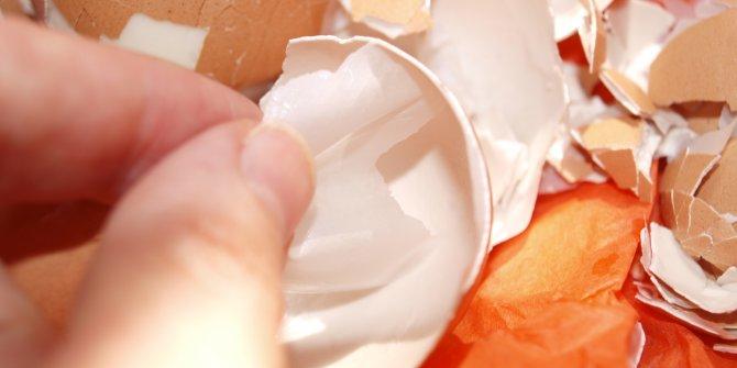 Yumurta zarını sakın çöpe atmayın! Böyle kullanınca derde derman oluyor