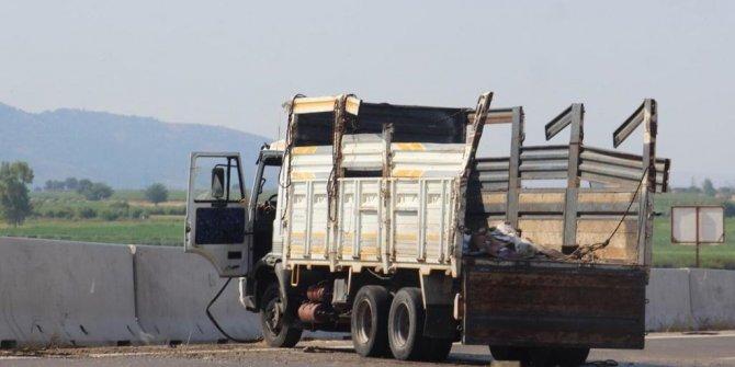 Arı kovanı yüklü kamyon ineğe çarptı