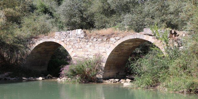 Define avcıları bu köprüye akın ediyor! Sağında yada solunda bir teneke altın