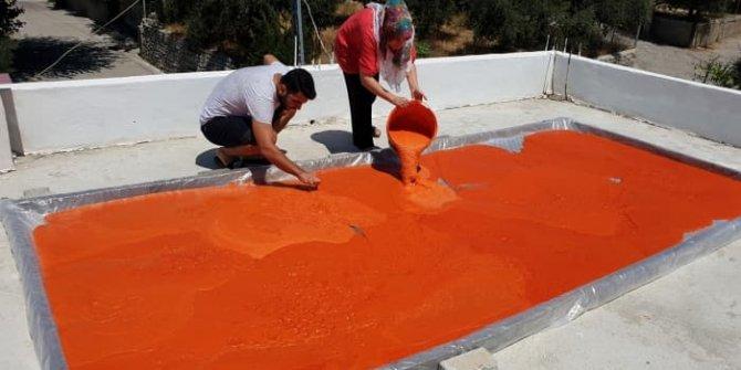 Osmaniye'de kırmızı biberin salçaya dönüş yolculuğu! Biber salçasının püf noktaları