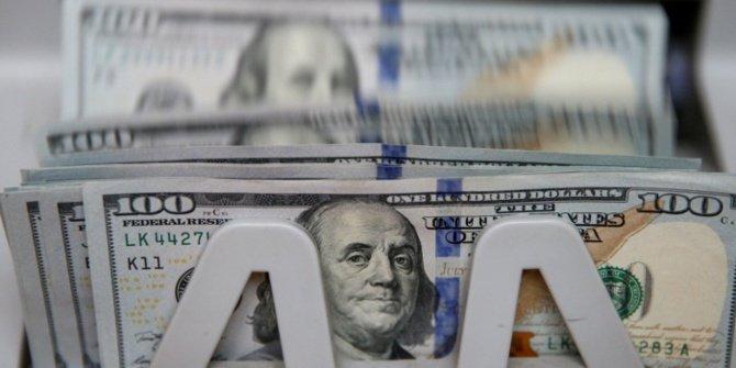 Vatandaşların döviz hesapları 220 milyar $'a dayanarak rekor kırdı