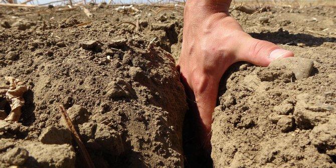 Edirne'de tarım durdu, çiftçi ekim yapamıyor