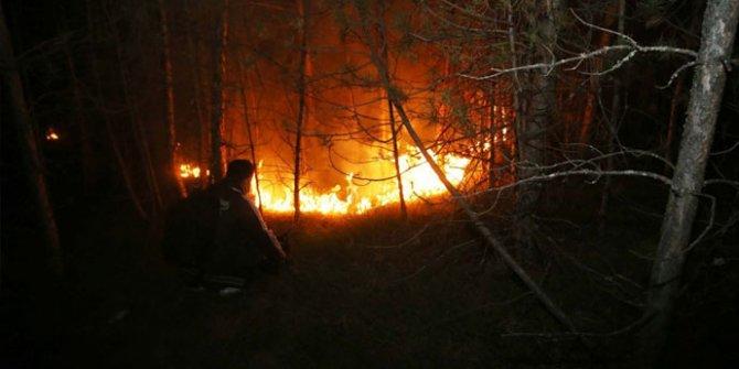 Kastamonu'da bir orman yangını daha!
