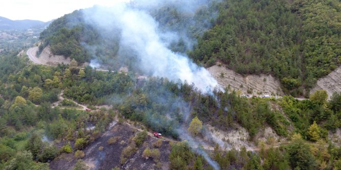 Otları temizlemek isterken, 20 hektarlık orman küle döndü: Her tarafa bir anda sıçradı