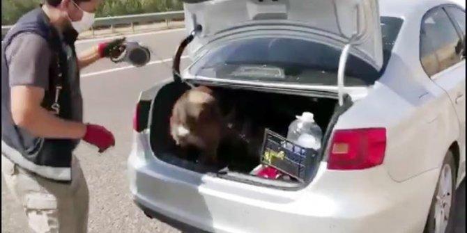 Otomobil bagajındaki kutulurdan uyuşturucu çıktı