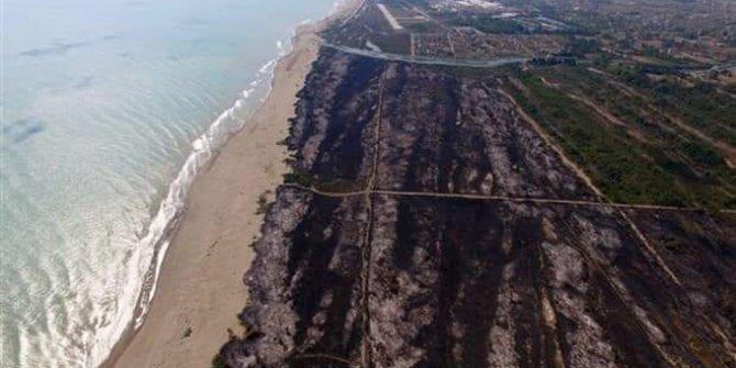 Ayvalık'ta 80 hektar orman yandı. Cennetteki son yangın bu. Asıl soru şu: Burayı sizce kimin için yaktılar