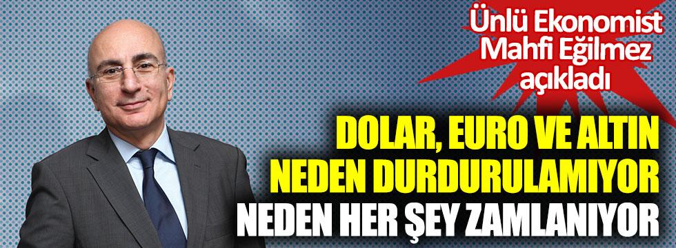 Dolar, euro ve altın neden durdurulamıyor? Neden her şey zamlanıyor? Ünlü ekonomist Mahfi Eğilmez açıkladı
