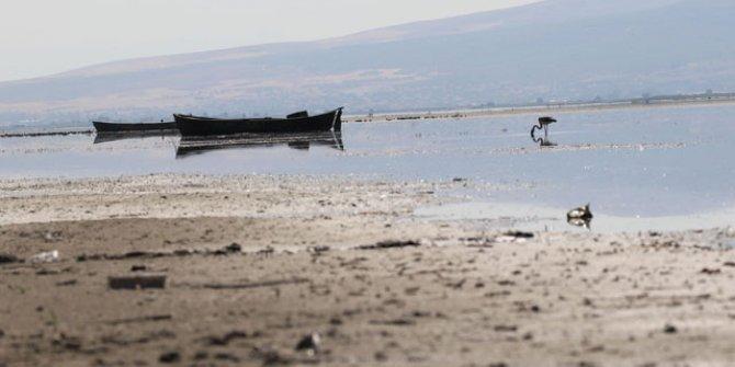 Göller bir bir kuruyor. Nilüferleriyle ünlü gölde tehlike çanları çalıyor