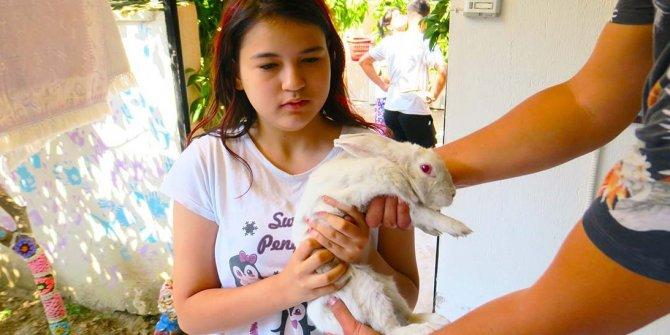 Kayıp tavşan operasyonu gülümsetti