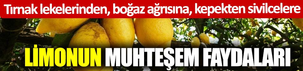 Tırnak lekelerinden, boğaz ağrısına, kepekten sivilcelere Limonun muhteşem faydaları