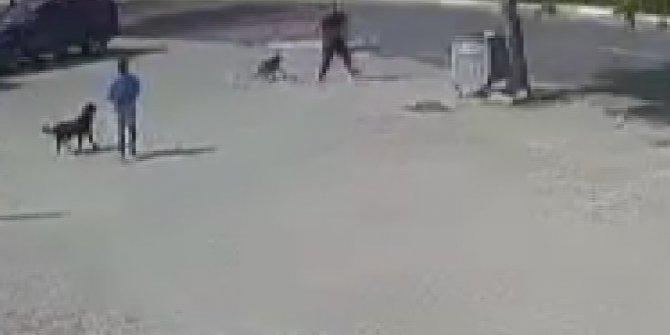 İstanbul'da sokak ortasında dehşet: Önce dövüştürdü sonra acımasızca vurdu