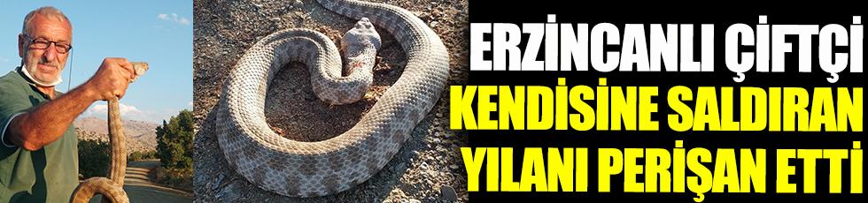 Erzincanlı çiftçi kendisine saldıran yılanı perişan etti