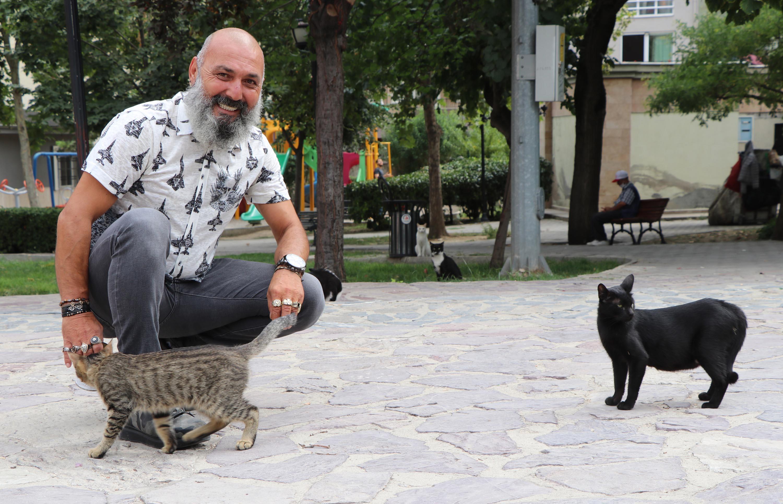 Hayvan sevgisi davalık oldu. Sokak kedilerinin kaderini mahkeme sonucu belirleyecek