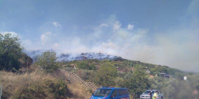 Muğla'daki orman yangınına müdahale ediliyor