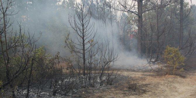 Türkiye'nin ciğerleri yandı! 7 ilde orman yangını çıktı