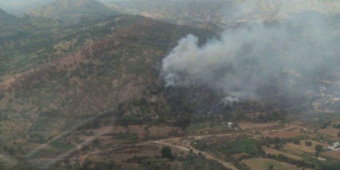 Aydın'da zeytinlik alanda yangın çıktı. 2 kişi yaralandı