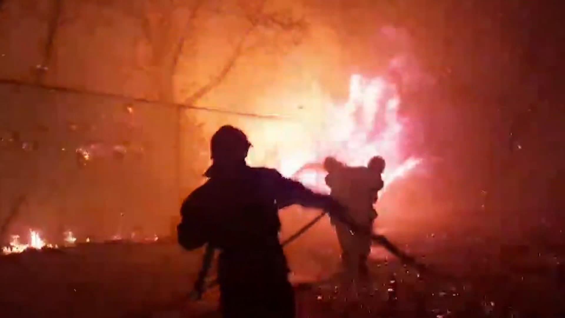 Orman yangını faciası, 4 ölü 10 yaralı